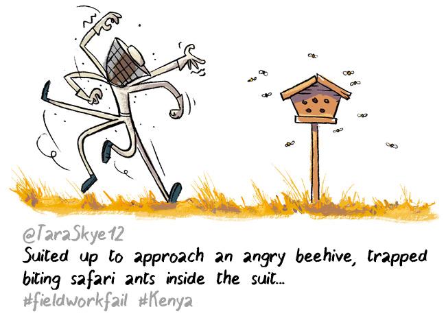 ants hive fieldworkfails
