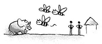 bees & elephant