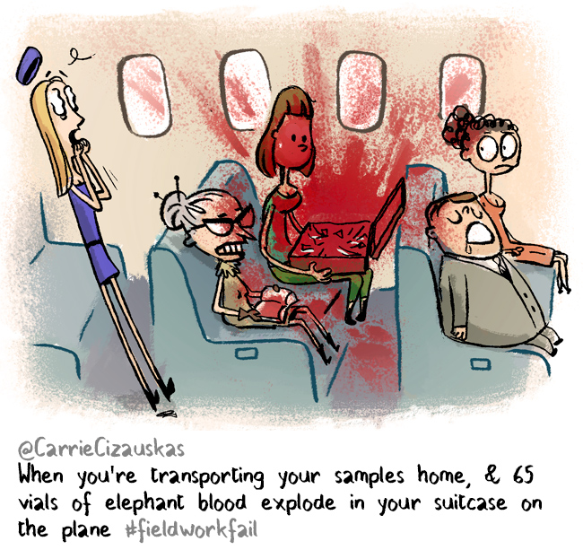 blood on plane #fieldworkfail