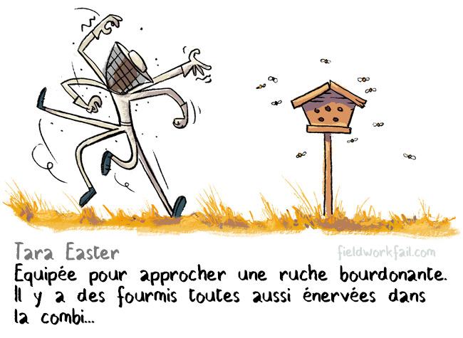 bees-FR
