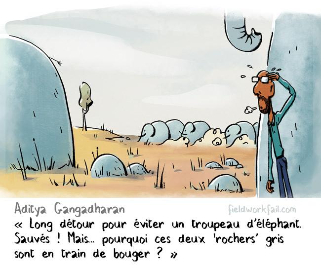 rocks-FR
