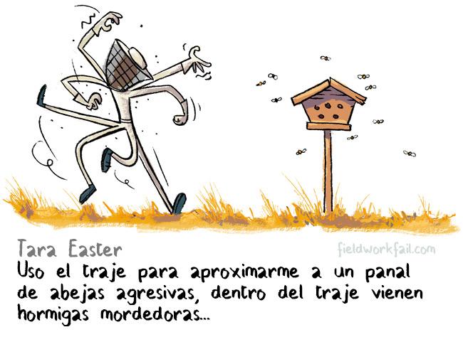 bees-ES