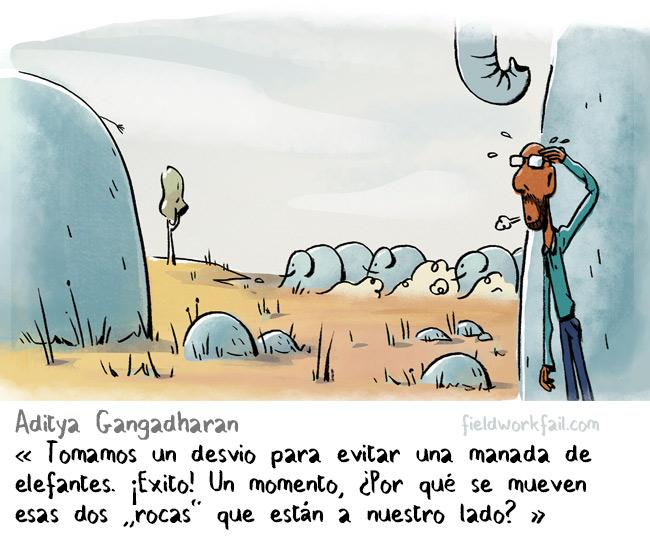 rocks-ES
