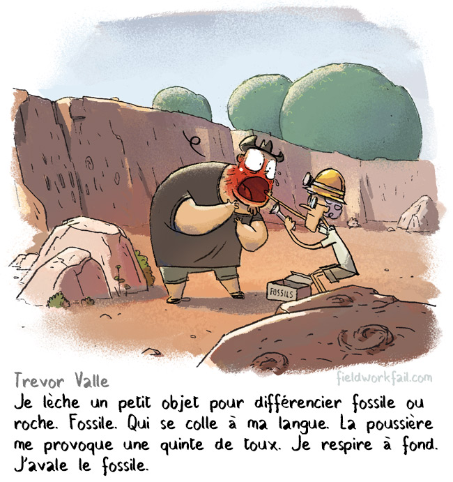 fossil-FR
