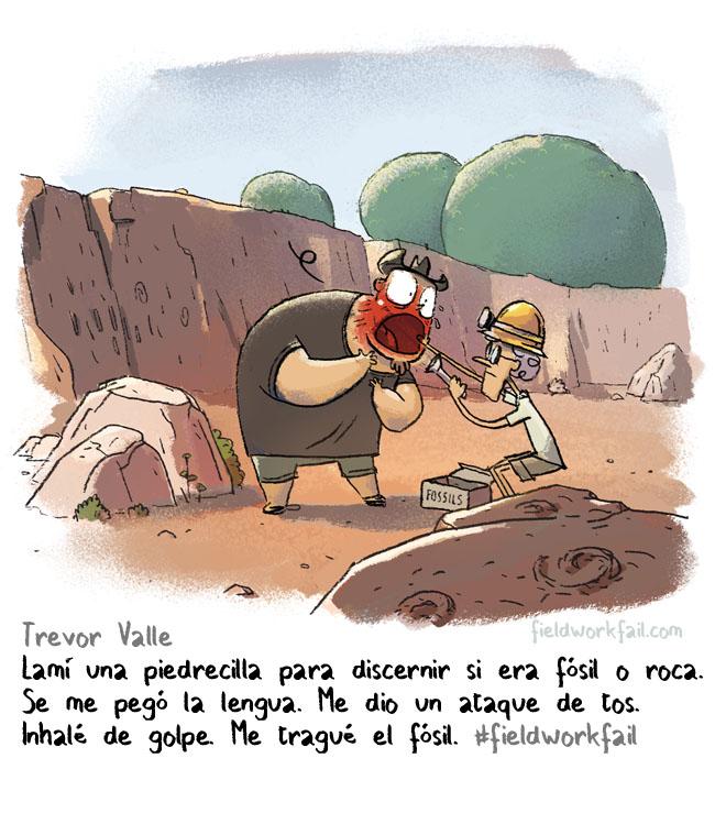 fossil espanol