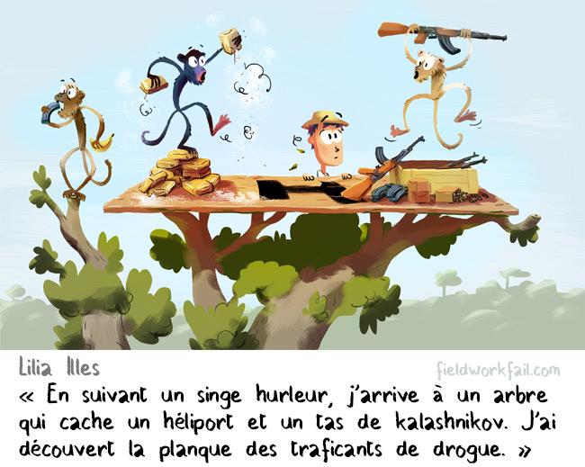 monkey-FR
